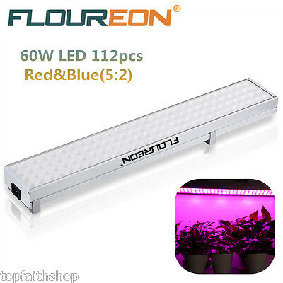 Floureon 60W 112pcs LED Luz de Recimiento Cultivo Hydroponic Plant Grow Light ES
