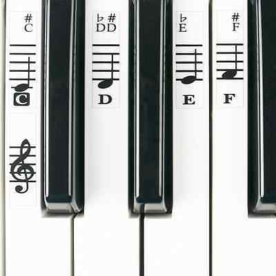 Piano Stickers for 49 / 61/ 76 / 88 Key Keyboards - Transparent and Removable wi