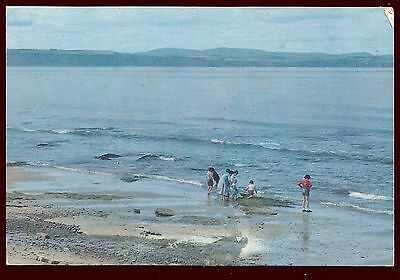 (39136) Family by the Water. Moray Firth, Nairn. W.S. Thomson Postcard