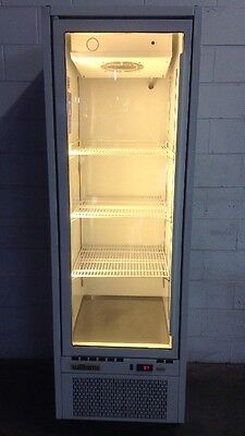 Williams COMMERCIAL Slim DISPLAY FRIDGE SHOP CAFE RESTAURANT EQUIPMENT