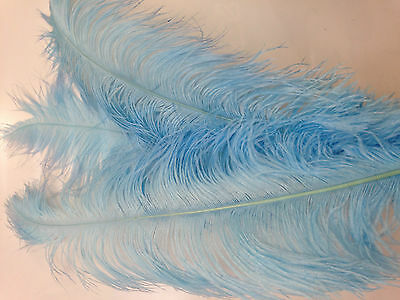 Large Ostrich Feathers. High Quality. Approx 85Cm Long