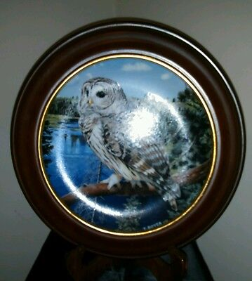 The Majesty of Owls, Danbury Mint 1992 Plate# AB407 On the Out Look Trevor Boyer