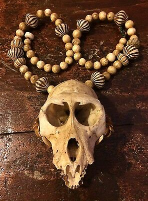 Antique Borneo Witch Doctor Beads And Skull,Strange, Occult, Witchcraft, Sorcery