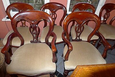 Solid mahogany Dutch fiddle back dining chairs - 4 plus 2 carvers. Balloon back.