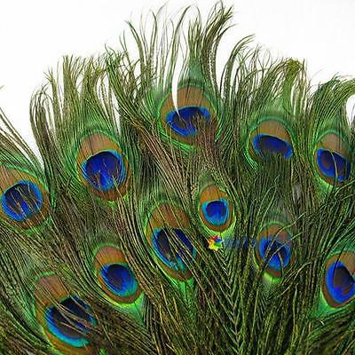 50pcs 100pcs 150pcs 200pcs Real Natural Peacock Tail Eyes Feathers 9-12 Inches