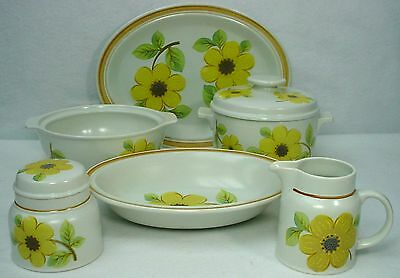 ROYAL DOULTON china SUMMER DAYS LS1002 pattern 8-piece HOSTESS SERVING Set