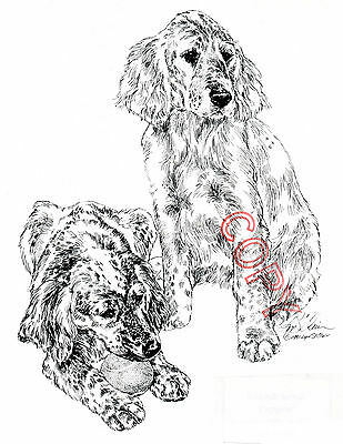 English Setter Limited Edition Print by Lyn St.Clair