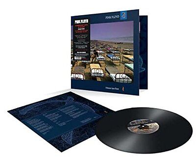 Pink Floyd A Momentary Lapse Of Reason 180 Gram Vinyl Lp (Remaster) (2017)