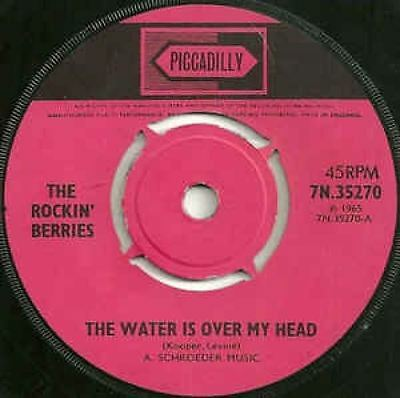 The Water Is Over My Head / Doesn't Time Fly 7 : The Rockin' Berries