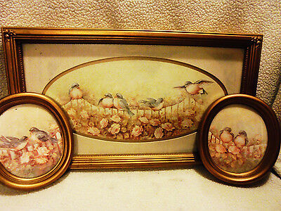 Set Of 3...homco Framed Bird Pictures By Margie Morrow...stunning...old