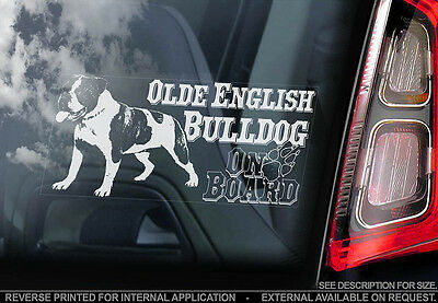 Olde English Bulldog - Car Window Sticker - Dog Sign -V01