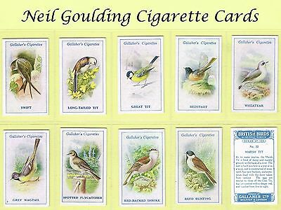 Gallaher - British Birds by George Rankin 1923 #1 to #100 Cigarette Cards