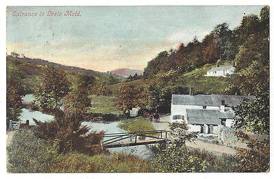 FLINTSHIRE Entrance to Leete Mold, Postcard by Valentine Posted 1907, Mold p/m