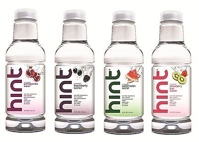 Hint Water Variety Pack 16 Ounce Bottle (Pack of 12)