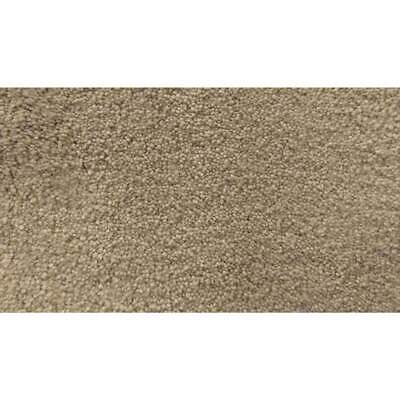 New Godfrey Hirst Carpets Nifti Plush Stoneware Nylon Carpet