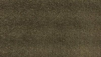 New Godfrey Hirst Forest Plush Iron Ore Wool Blend 60oz Carpet PLM