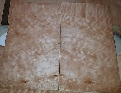 """2 buckled pieces quilted maple wood veneer 14 3/8"""" x 8 1/4"""" each guitar Luthier"""