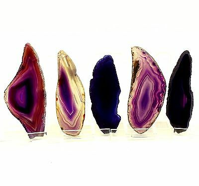 Purple Brazil Agate Slices Geode Polished Quartz Lot 0.8-2.2 inches (5) P32
