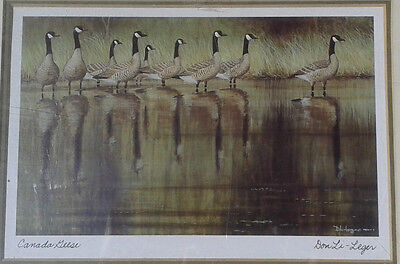 """Canada Geese"". Framed signed print by Don Li-Leger, noted Canadian artist. BNIP"