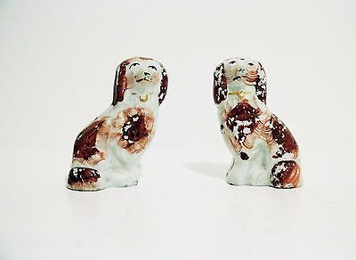 Antique Pair of Small Victorian Ceramic Staffordshire Spaniel Dogs Ornaments