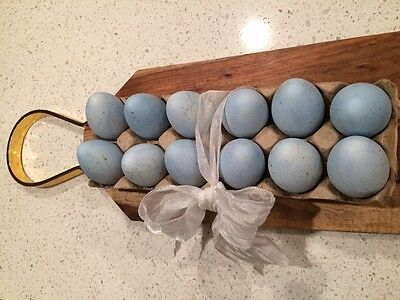 One Dozen Plastic Easter Eggs Dyed to Robin Blue & Speckled in Ralph Lauren Gold