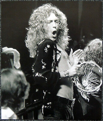 Led Zeppelin Poster Page 1975 Robert Plant Earls Court London Concert . P23