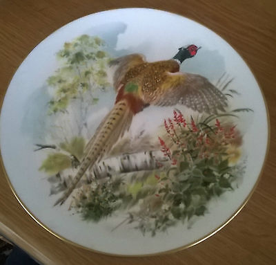 Crown Staffordshire Pheasant Phasianus Colchicus Fine Bone China Plate England