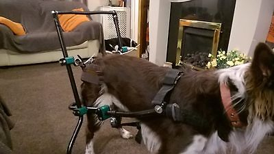 dog mobility cart