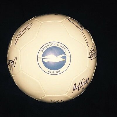 Squad Signed Brighton Official Football Size 5 2015/2016 Season