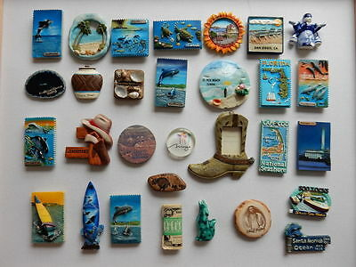 One Selected 3D Souvenir Fridge Magnet from the USA
