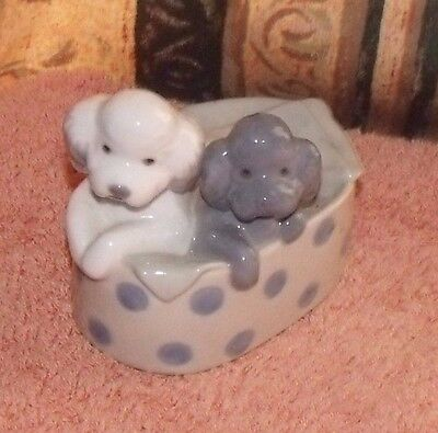 Nao Puppies In Basket