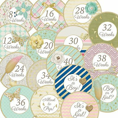 16 Touch of Gold Mint Pink Cottage Chic Pregnancy Maternity Stickers
