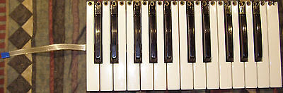 Fatar keybed,no electronics! With aftertouch strip! 25 semiweighted keys!