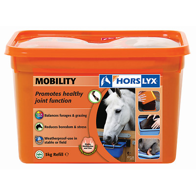 Horslyx 5kg Mobility Stable/Paddock Horse Lick