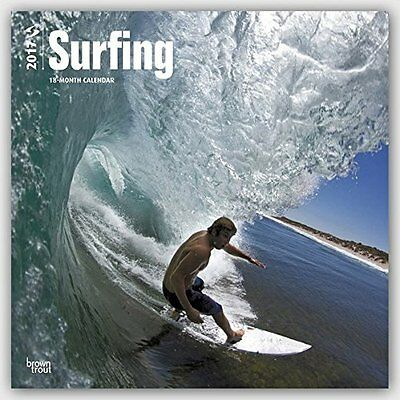 Surfing 2017 Square