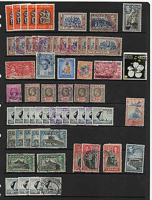 Accumulation Of Used Ceylon  Stamps