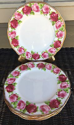 """Royal Albert Old English Rose Lunch Luncheon Dinner Plate 9-1/4"""" Gold Trim"""