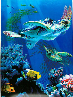 turtle marine life  3D Lenticular  Holographic Stereoscopic Picture Wall Art