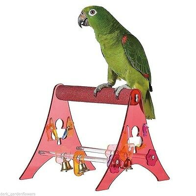Sanded Nail Trimming Portable  Parrot Stand Training Perch African Grey Amazon
