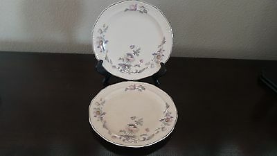 Edwin Knowles China Salad Plates Mayglow Alice Ann Platinum Trim x 2
