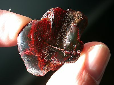 Blood RED Dominican AMBER Gemstone Los CaCaos Mines TOP Quality 5.7 g