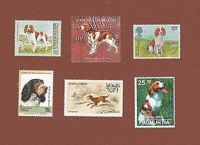Welsh Springer Spaniel dog stamps set of 6 MNH