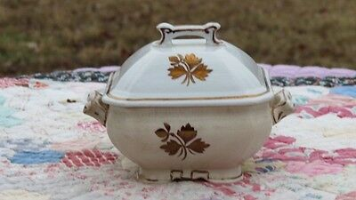 Antique Royal IronStone China Alfred Meakin England Butter Dish Gold Tea Leaf