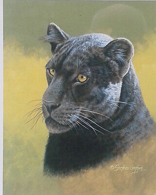 Stephen Gayford. Framed limited edition print of a Black Jaguar.
