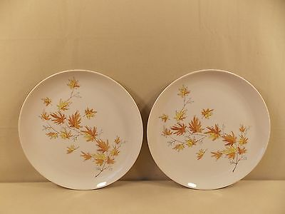 "Taylor, Smith & Taylor ""Autumn Splendor"" 2 Dinner Plates"