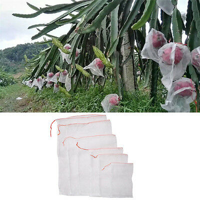 1-100X Garden Plant Fruit Protect Bags Sac Net Mesh Against Insect Pest Bird  AC