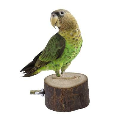 Wooden Parrot Bird Canary Cage Play Stand Perches Rest Platform Play Toy