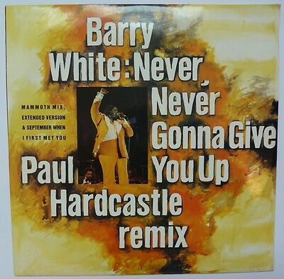 Barry White - Never Never Gonna Give You Up - Paul Hardcastle Remix