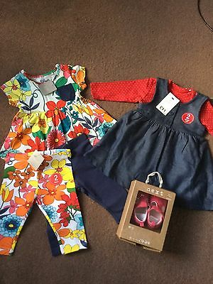 Next Baby Girl Clothes Bundle  Bnwt 3-6 Months