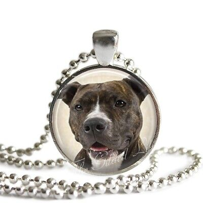 PIT BULL Pendant Necklace, Staffordshire Terrier, Glass Photo Art Necklace
